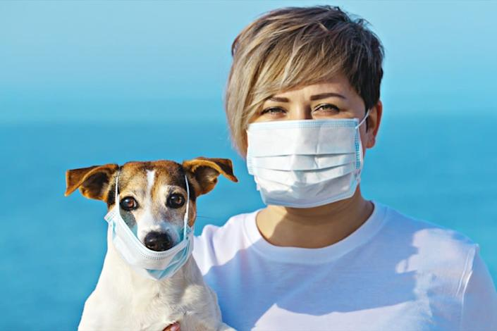 Woman in protective surgical mask holds dog pet in face mask