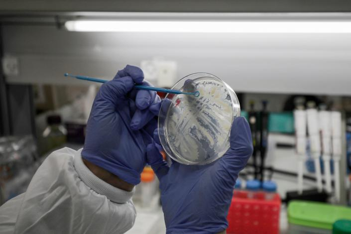 A scientist works at a laboratory in Israel, where efforts are underway to produce a vaccine against the COVID-19 coronavirus. (Jalaa Marey/AFP)