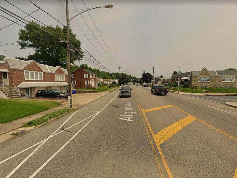General view of Algon Avenue, in Philadelphia, where 59-year-old cat rescuer Albert Chernoff was found dead at his home on 5 November, 2019: Google