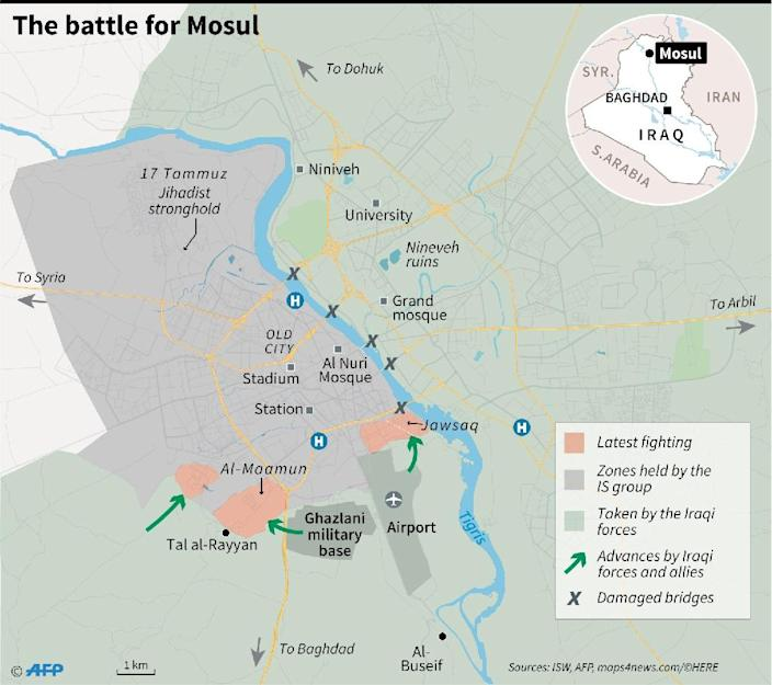 The battle for Mosul (AFP Photo/Paz PIZARRO, Sophie RAMIS, Thomas SAINT-CRICQ)