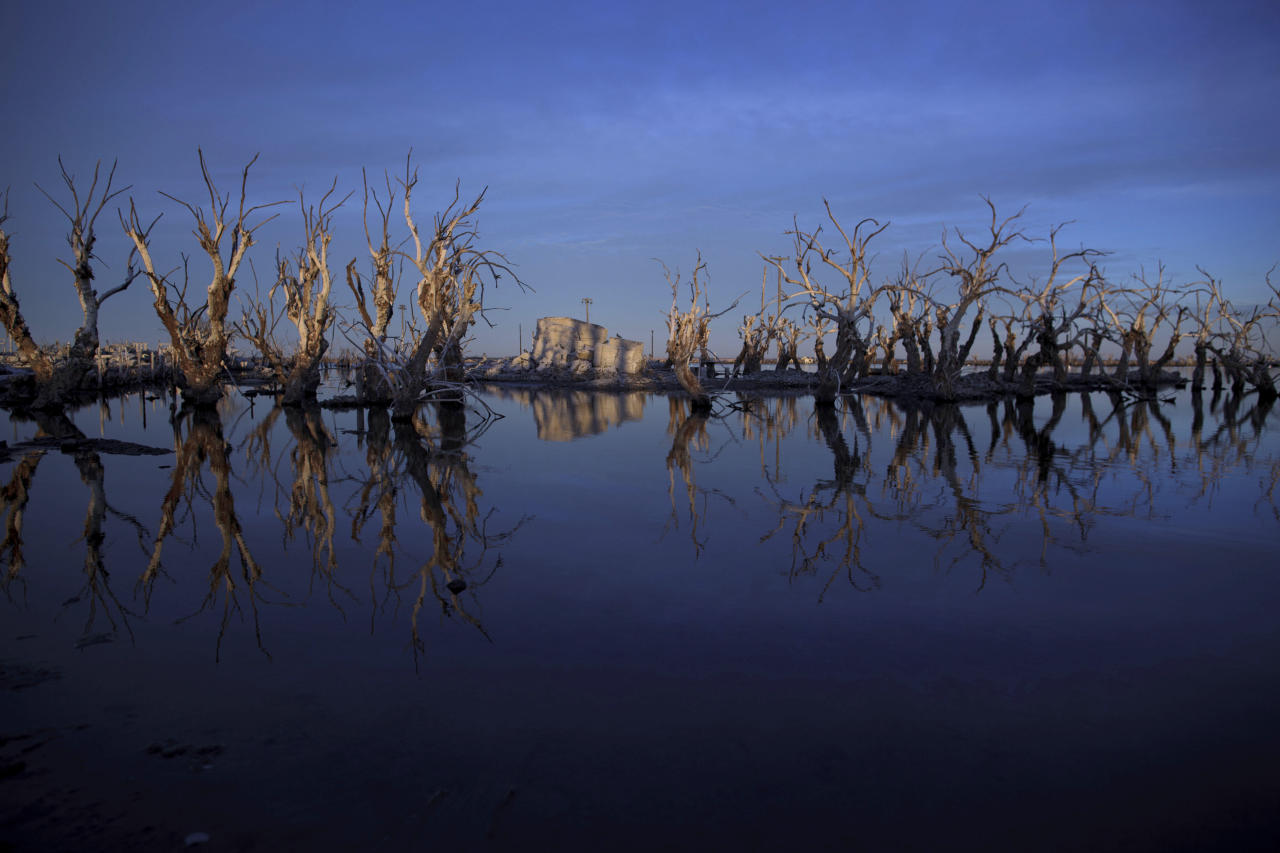 In this May 7, 2013 photo, trees are reflected in water in Epecuen, a village that once was submerged in water in Argentina. Many residents of Epecuen fled to nearby Carhue, another lakeside town, and set up new hotels and spas, promising relaxing getaways featuring saltwater and mud facials. (AP Photo/Natacha Pisarenko)