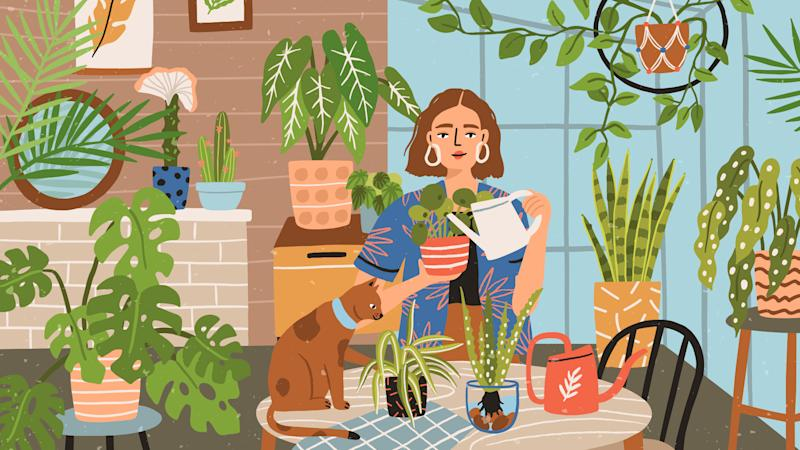 Hot Tips From Plant People: How To Ensure Your Leafy Friends Thrive