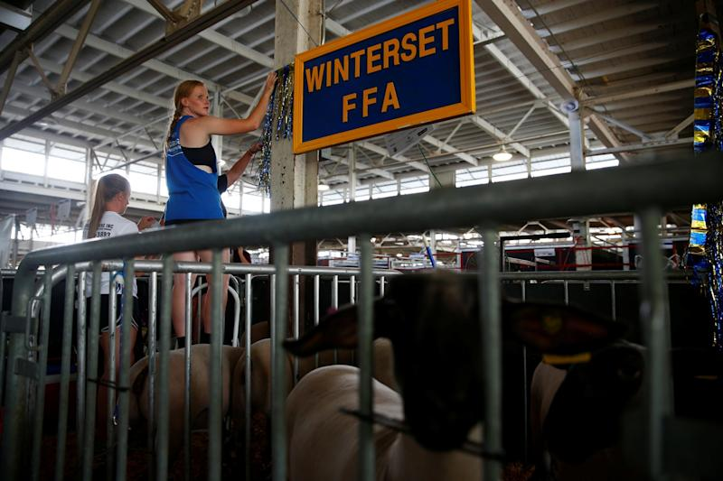 People preparing for the Iowa State Fair. The agricultural show's ability to attract top politicians every year is testament to the power of the farming industry in the US: REUTERS