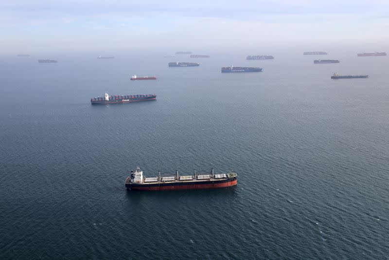 FILE PHOTO: Container ships and oil tankers wait in the ocean outside the Port of Long Beach-Port of Los Angeles complex, amid the coronavirus disease (COVID-19) pandemic, in Los Angeles