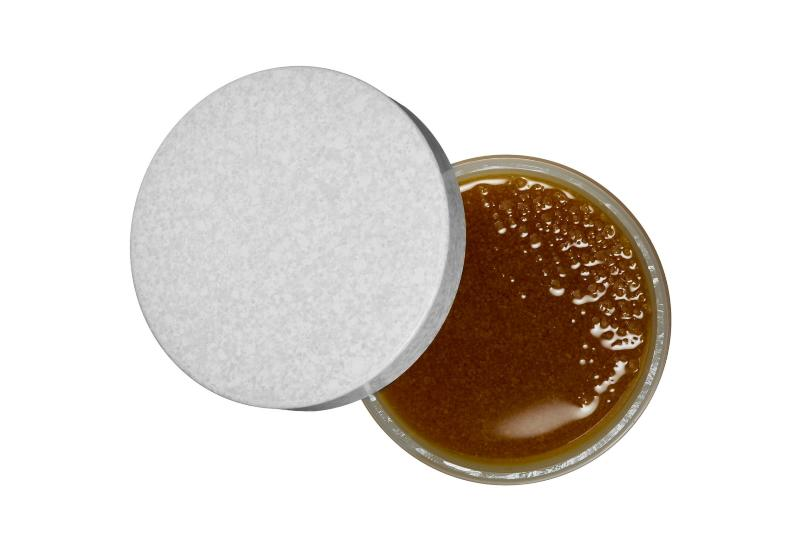 Brown Sugar Body Polish Exfoliator by Fresh (Photo: Sephora)