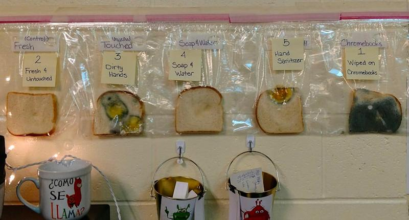 Teachers at an Idaho elementary school performed a science experiment with bread to show the importance of hand washing. (Photo: Jaralee Annice Metcalf)