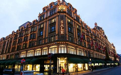 The Harrods store in Knightsbridge was a popular haunt of Mrs Hajiyeva - Credit:  CARL DE SOUZA/AFP