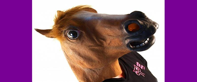 Horse Head Mask from Accoutrements
