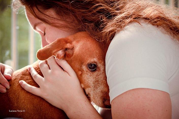 <p>A deeply moving image, here Mike the rescue dog has been captured embracing his new owner and feeling loved for the first time. </p>