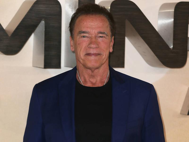 Arnold Schwarzenegger donates $1 million to medical supplies fund