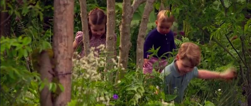 Photo credit: Prince William: A Planet For Us All (ITV) - ITV