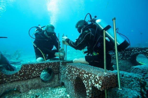 Two scuba divers work with slabs of Oceanite, which is designed to restore coastal ecosystems that have been damaged by underwater construction. (Ian Kellett, OceanX - image credit)