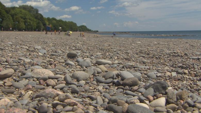 Rising water line in The Beach 'normal' - but all is not well on Toronto's shore
