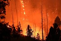 The Dixie Fire is raging through California's northern forests, as climate change makes wildfire season longer, hotter and more devastating