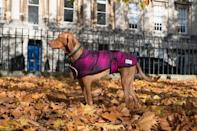 """<p>Harris tweed dog coat tailored to your canine's exact specifications. Lined with cosy shearling, complete with a collar that can be popped to protect your pooch from howling winter winds.</p><p>£65 <a href=""""https://www.etsy.com/uk/listing/213825899/harris-tweed-dog-coats-the-poppy-cherish?ref=related-1"""" rel=""""nofollow noopener"""" target=""""_blank"""" data-ylk=""""slk:Dawn Colgan"""" class=""""link rapid-noclick-resp"""">Dawn Colgan</a></p>"""