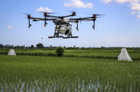 In this photo taken Thursday, Oct. 31, 2019, a drone to spray the breeding grounds of malaria-carrying mosquitoes is tested at Cheju paddy farms in the southern Cheju region of the island of Zanzibar, Tanzania. Drones spraying a silicone-based liquid that spreads across the large expanses of stagnant water where malaria-carrying mosquitoes lay their eggs, are being tested to help fight the disease on the island of Zanzibar, off the coast of Tanzania. (AP Photo/Haroub Hussein)