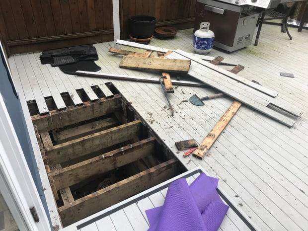 Wade Deisman had to tear up his back deck to rescue the Cairn terrier that had gotten trapped in an air shaft below.
