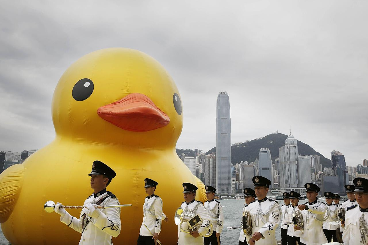 "HONG KONG - MAY 02:  Dutch conceptual artist, Florentijin Hofman's Floating duck sculpture called ""Spreading Joy Around the World"", is given a welcome ceremony by the Hong Kong Police band as it is moved to the South Side of Ocean Terminal, Victoria Harbour, on May 2, 2013 in Hong Kong. The ""Rubber Duck"", which is 16.5 meters high, will be in Hong Kong from May 2 to June 9. Since 2007, ""Rubber Duck"" has been traveling to 10 countries and 12 cities. (Photo by Jessica Hromas/Getty Images)"