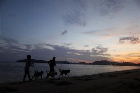 Residents run with their dogs on a beach in Acapulco, October 1, 2013. REUTERS/Edgard Garrido