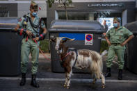 Members of La Legion, an elite unit of the Spanish Army, including a goat they use as a pet wait for the start of a military parade celebrating a holiday known as 'Dia de la Hispanidad' or Hispanic Day in Madrid, Spain, Tuesday, Oct. 12, 2021. Spain commemorates Christopher Columbus' arrival in the New World and also Spain's armed forces day. (AP Photo/Manu Fernandez)