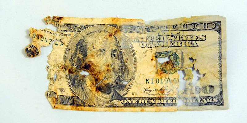 """This March 8, 2013 photo shows one of the five $100 bills recovered which Wayne Klinkel of Montana City, Mont. says his golden retriever ate while he and his wife were on a road trip to visit their daughter. Klinkel says he carefully picked through the dog's droppings, and his daughter recovered more when snow melted. He says he washed the remnants of the bills and taped them together and sent them to the Treasury Department's Bureau of Engraving and Printing with an explanation of what happened. The bureau's website says an """"experienced mutilated currency examiner"""" will determine if at least 51 percent of a bill is present and eligible for reimbursement. The process can take up to two years. (AP Photo/The Independent Record, Eliza Wiley)"""