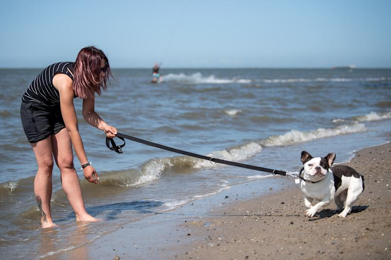 Jenny from Bavaria tries to lure the water-shy dog Tyson into the North Sea. (Photo: Sina Schuldt/picture alliance via Getty Images)