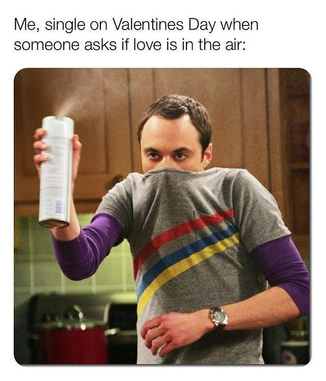 """<p>Sheldon Cooper from <em><a href=""""https://www.amazon.com/Big-Bang-Theory-Complete-Season/dp/B005S39YGU"""" rel=""""nofollow noopener"""" target=""""_blank"""" data-ylk=""""slk:The Big Bang Theory"""" class=""""link rapid-noclick-resp"""">The Big Bang Theory</a></em> said it best: """"Love is in the air? Wrong. Nitrogen, Argon and Carbon Dioxide are in the air."""" </p><p><a href=""""https://www.instagram.com/p/Bt4QWU3FYTq/"""" rel=""""nofollow noopener"""" target=""""_blank"""" data-ylk=""""slk:See the original post on Instagram"""" class=""""link rapid-noclick-resp"""">See the original post on Instagram</a></p>"""