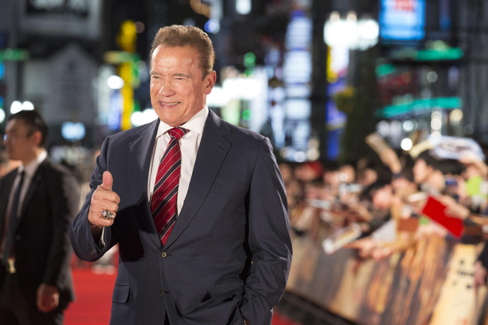 Arnold Schwarzenegger attends the Japan premiere of 'Terminator: Dark Fate' on November 06, 2019. (Photo by Yuichi Yamazaki/Getty Images)