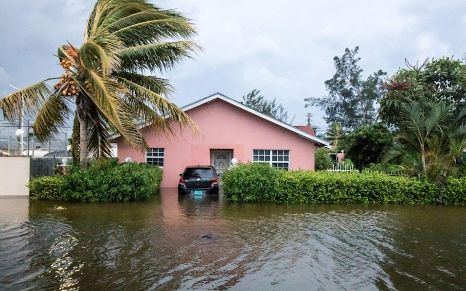 A palm tree bends in the wind next to a flooded street after the effects of Hurricane Dorian arrived in Nassau,Bahamas - REUTERS