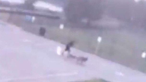 PHOTO: Surveillance video obtained by Houston ABC station KTRK shows the moment a man walking his dogs is struck by lightning in Spring, Texas, Sept. 3, 2019. (Stuebner Airline Veterinary Hospital via KTRK)