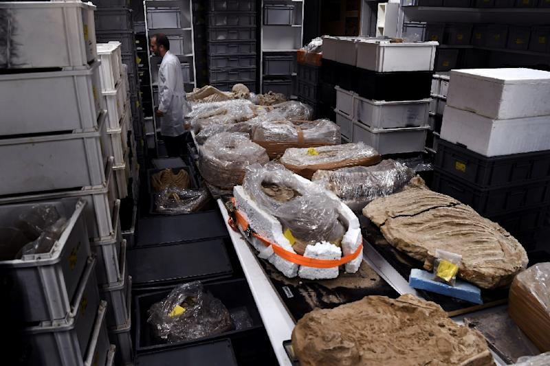 Archeological findings stored in a lab at the American School of Archeology in Athens, pictured on July 7, 2017 (AFP Photo/Aris MESSINIS)