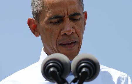 Obama looks down as he speaks about the Malaysian airliner flight MH-17 that was brought down over eastern Ukraine on Thursday, killing all 295 people aboard, during a visit to the Port of Wilmington in Wilmington, Delaware