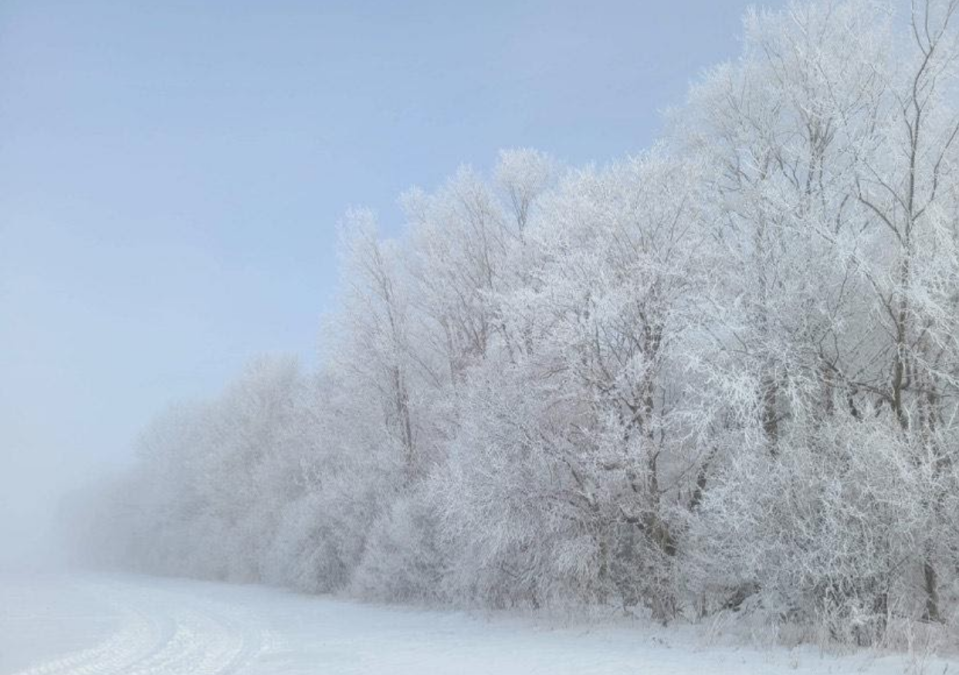 Rime ice: David Piano @ONwxchaser, submitted via Mark Robinson