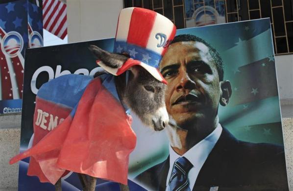 A baby donkey named Demo by its owner Silvio Carrasquilla stands dressed as the mascot of the Democratic Party in front of a poster of President Obama, outside Carrasquilla's home in Turbaco, near Cartagena, April 11, 2012.