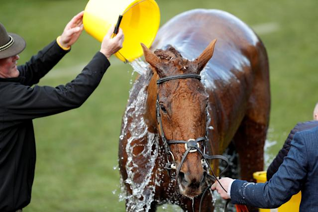 Horse Racing - Cheltenham Festival - Cheltenham Racecourse, Cheltenham, Britain - March 15, 2018 Balko Des Flos after winning the 14:50 Ryanair Chase REUTERS/Darren Staples