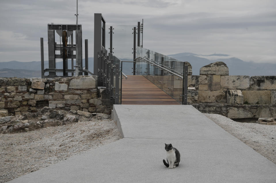 A cat stands in front of a new elevator, following the restoration of the Acropolis archaeological site in order to become fully accessible to people with disabilities and mobility issues, during the International Day of Persons with Disabilities, in Athens, on Thursday, Dec. 3, 2020. (Louisa Gouliamaki/Pool via AP)