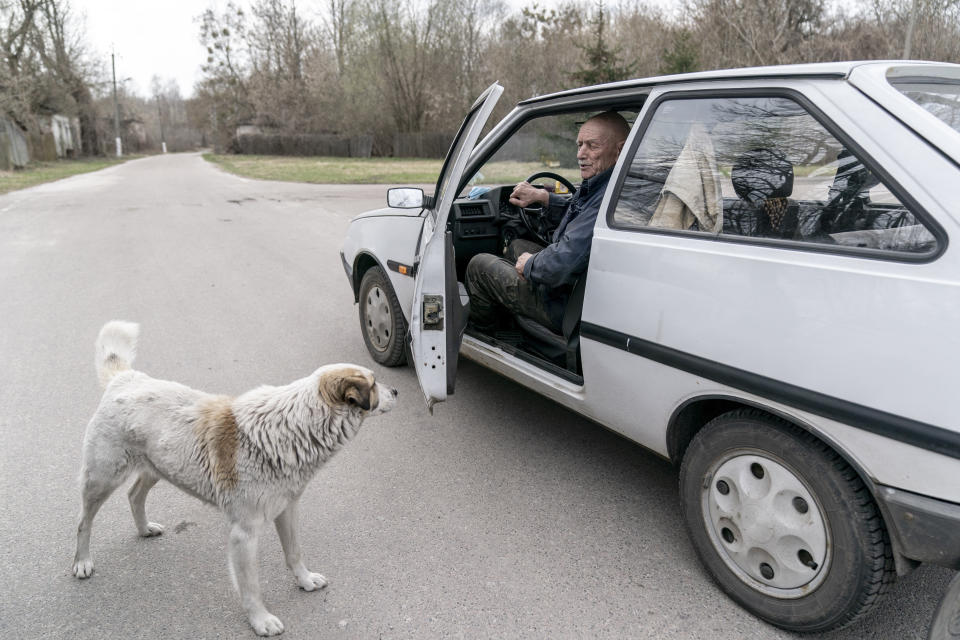 "Yevgeny Markevich, 85-year-old former teacher speaks to his dog as he prepares to drive at the Chernobyl exclusion zone, Ukraine, Wednesday, April 14, 2021. Markevich said ""It's a great happiness to live at home, but it's sad that it's not as it used to be."" Today, he grows potatoes and cucumbers on his garden plot, which he takes for tests ""in order to partially protect myself."" The vast and empty Chernobyl Exclusion Zone around the site of the world's worst nuclear accident is a baleful monument to human mistakes. Yet 35 years after a power plant reactor exploded, Ukrainians also look to it for inspiration, solace and income. (AP Photo/Evgeniy Maloletka)"