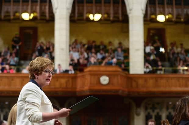 First elected in 2004, former Conservative MP Diane Finley announced she was resigning her Ontario seat of Haldimand–Norfolk. A byelection will have to be held in the next six months if a general election does not occur first. (Sean Kilpatrick / Canadian Press - image credit)