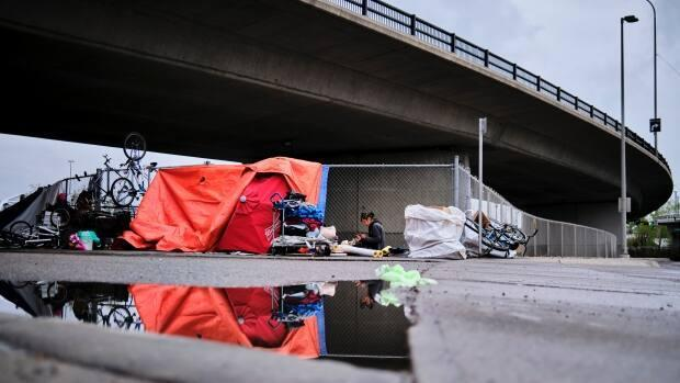 A homeless camp under an overpass in Calgary, Alta., on May 20, 2020. 'If you want to address homelessness, it's really poverty that you have to address,' said Ronald Redbone, the co-author of a study that shows 27 per cent of Calgarians using homeless shelters are there for the first time. (Jeff McIntosh/The Canadian Press - image credit)
