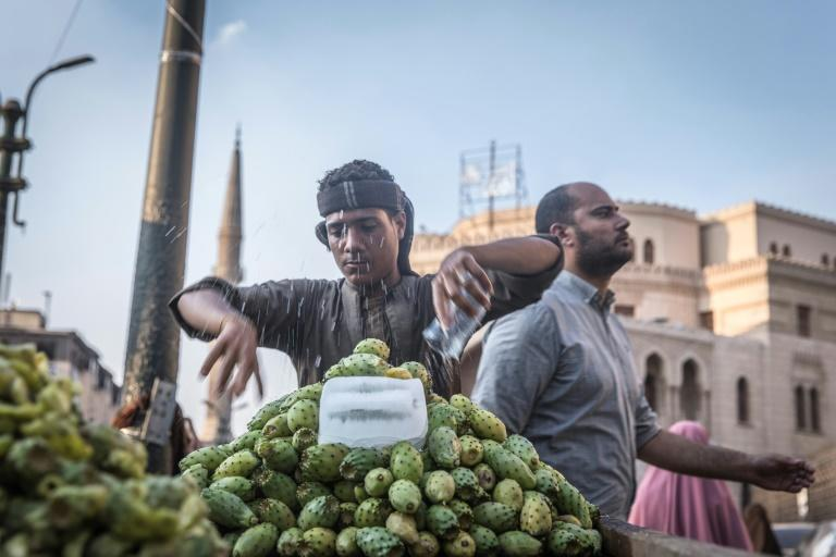 The easing of Egypt's inflation was due to a drop in household items including fruit and vegetables on the back of an increase in agricultural production