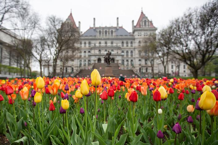 The New York State Capitol Building in Albany on Thursday, April 29, 2021.