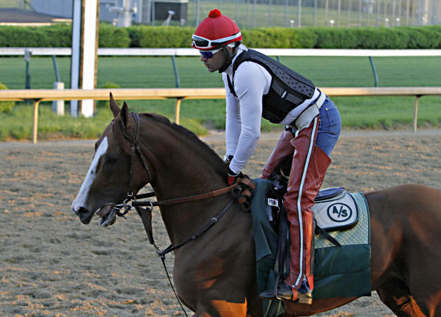 Kentucky Derby winner California Chrome jogged the wrong way around the track with exercise rider Willy Delgado aboard for the first time since his big win at Churchill Downs in Louisville, Ky., Wednesday morning, May 7, 2014. (AP Photo/Garry Jones)