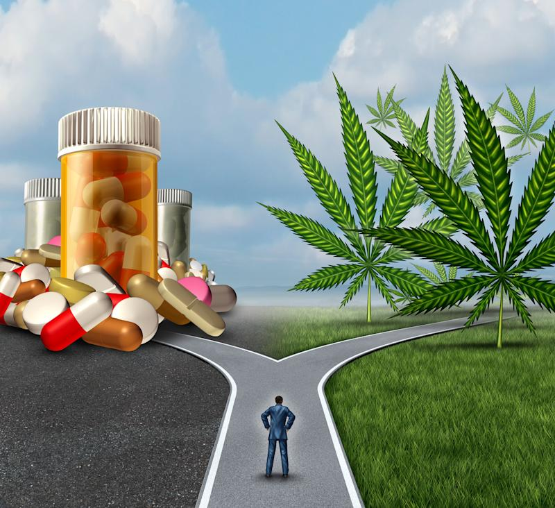 A businessman standing at a fork in the road, with the left side leading to prescription pills, and the right side leading to cannabis leaves.