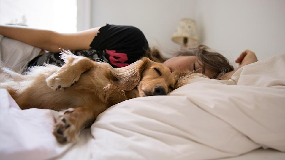 How much sleep do you need? A woman sleeping with her pet dog.