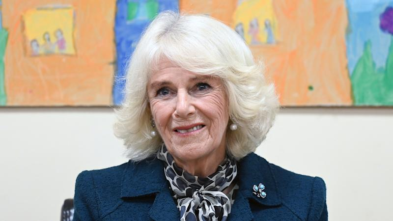 Camilla moved by experiences of domestic abuse victims