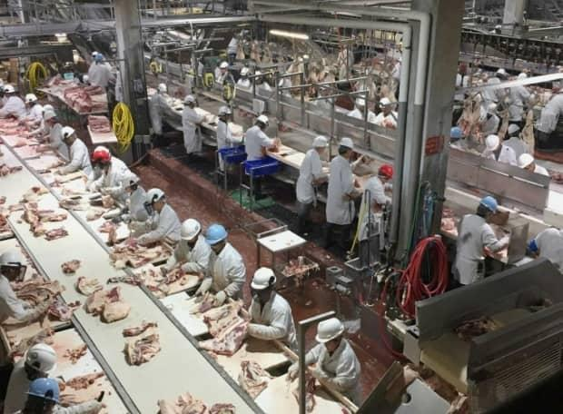 Workers prepare beef to be packaged at the Cargill facility near High River, Alta. The plant is the site of what became the largest COVID-19 outbreak in North America in April 2020. (Name withheld - image credit)