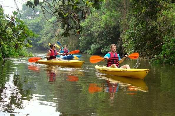 Kayaking on Sal River, Goa.