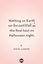 <p>Nothing on Earth so beautiful as the final haul on Halloween night.</p>