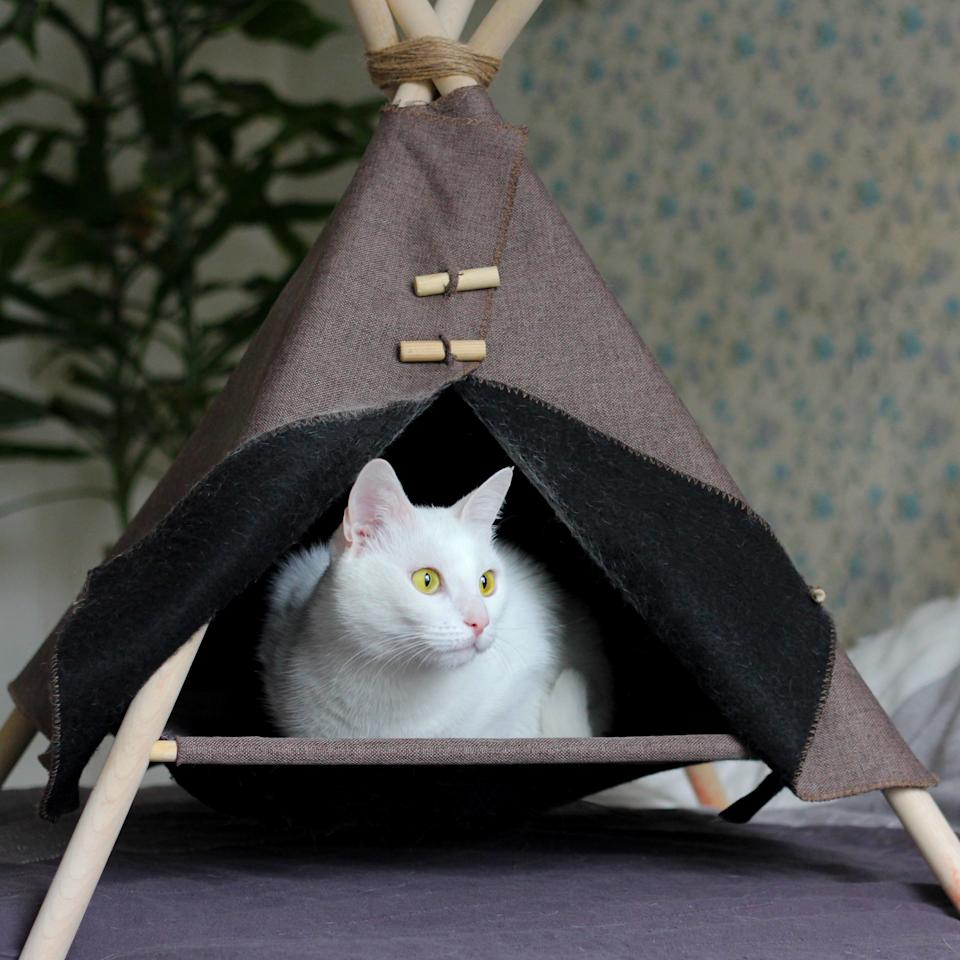 a white cat with yellow eyes is sitting in her house. a cozy Lodge wigwam made by yourself for your favorite pet.