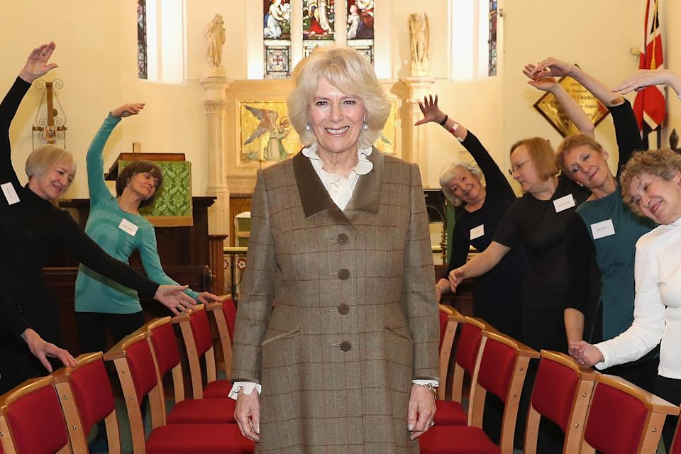 Camilla with Silver Swans in Bath - she's been doing the lessons online. (Getty Images)
